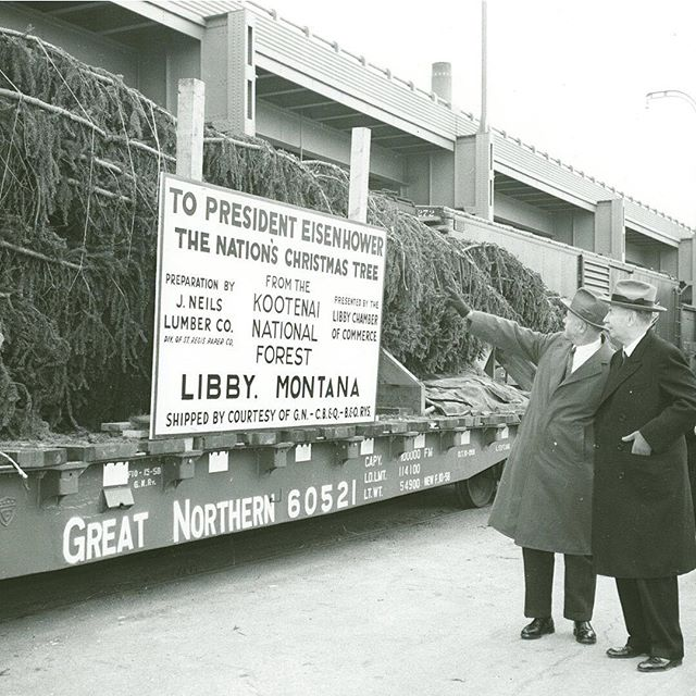 1958 National Christmas Tree